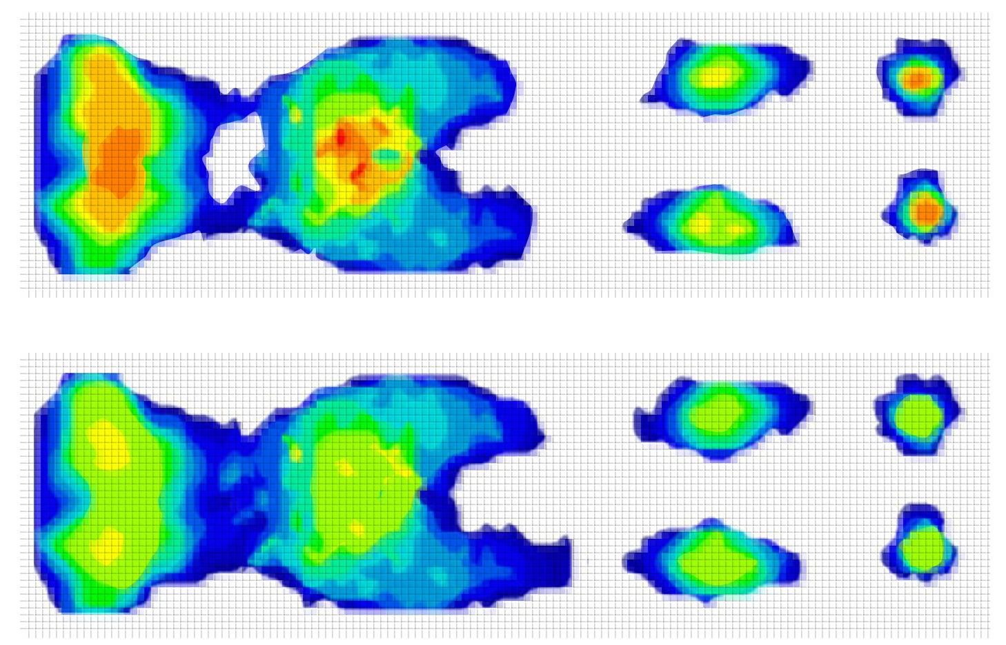 스프링과 폼 체중 분산 비교